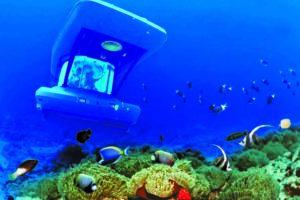 Подводные развлечения на Маврикии