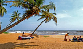 Песчаный пляж Barberyn Beach Ayurveda Resort