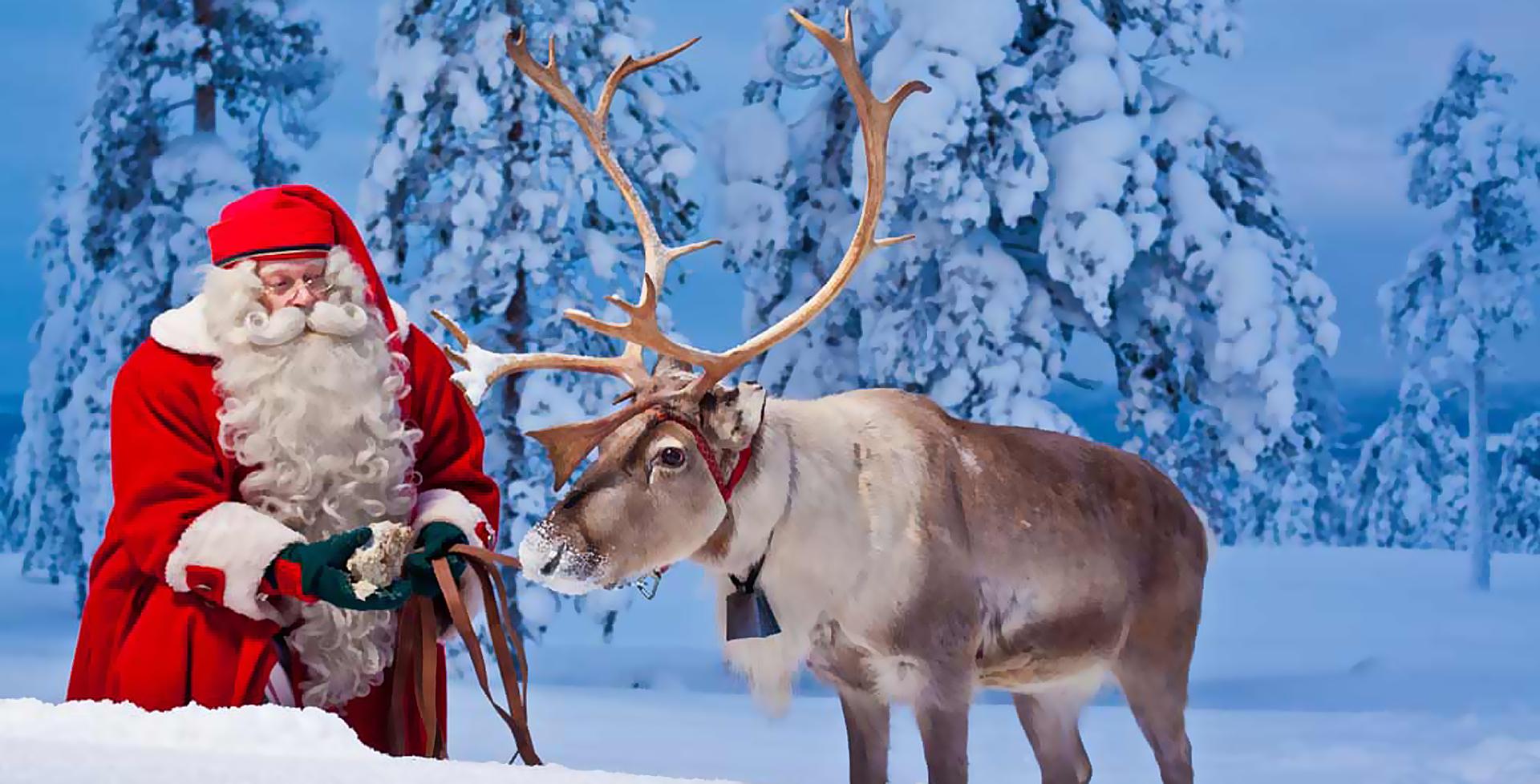 Нановый год с детьми в Лапландию