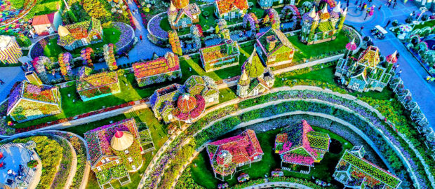 Парк цветов Miracle Garden