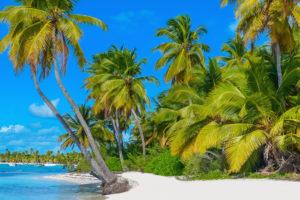 Отдых на курортах Доминиканы